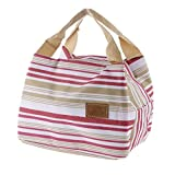 Trexee Canvas Thermal Insulated Lunch Bag, Multicolour