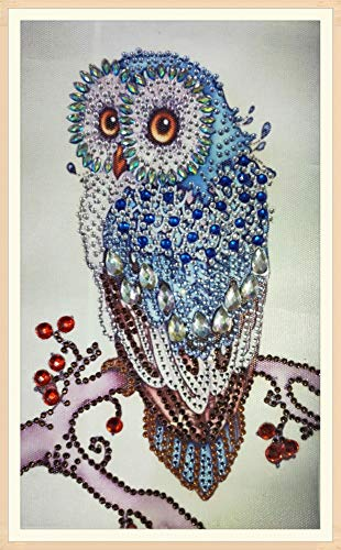 Diamant-Gemälde DIY 5D Special Shape Strass ABEUTY Red Mandala Floral Blumen Teil-Bohrer Kristall Diamant Dotz Kits Owl 4 -