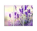 130x90cm – KUNSTDRUCK Lavendel blau-lila Farbfilter 3teiliges Wandbild auf Leinwand und Keilrahmen - Fotobild Kunstdruck Artprint