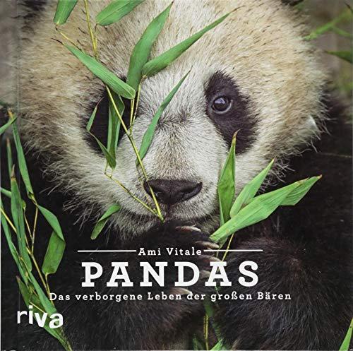 Pandas: Das verborgene Leben der großen Bären (Buch Des Lebens Kostüm)