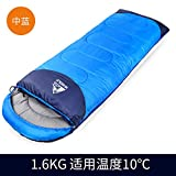 Coleman Camping Sleeping Pads Review and Comparison