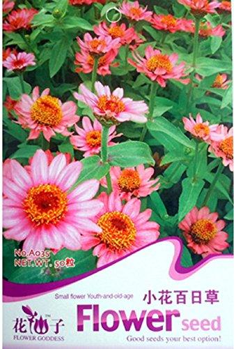 50 semi di fiori di