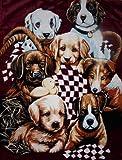 Kuscheldecke Tagesdecke Decke Motiv Hunde / Welpen 160x200cm