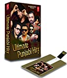 #4: Ultimate Punjabi Hits (4 GB)