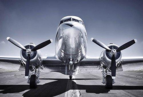Scenolia Tapiz Déco Póster avión con hélices 3x 2,70M   Déco y Fotos de Pared XXL Calidad HD