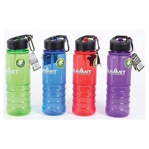 Summit Water Bottle 700ml + Straw Assorted