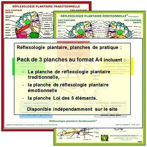 Réflexologie plantaire, pack de 3 planches de pratique, traditionnelle, émotionnelle et Loi des 5 éléments