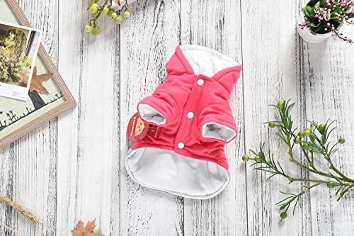 CLLUZU Haustier-Kleidungs-super Nette Katzen-Karikatur mit Hut-Kleidung bequemes thermisches kleines Welpen-Sweatshirt-Kostüm(XL/Rot)