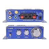 Earlybird Savings Amplificador de audio 12V - Mini amplificador de alta fidelidad Mini Amplificador de potencia de audio Hi-Fi