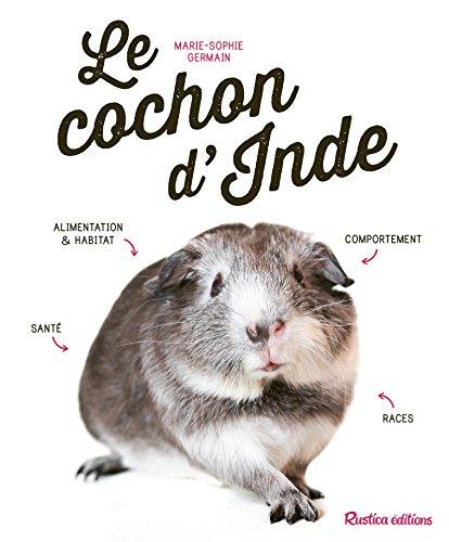 Le cochon d'Inde par Marie-Sophie Germain