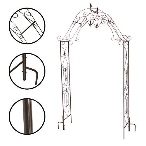 1PLUS Rosenbogen robuster Rosenbogen aus Stahl im Test