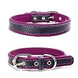 TFENG Hundehalsband, Verstellbarer Lederhalsband Basic Bling Halsbänder für Katzen und Hunde(Lila,XS)
