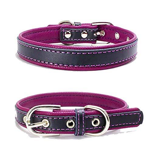 TFENG Hundehalsband, Verstellbarer Lederhalsband Basic Bling Halsbänder für Katzen und Hunde(Lila,XS) -