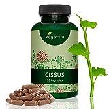 Cissus quadrangularis | LABORGEPRÜFT und ZERTIFIZIERT | 6500 mg Cissus pro Kapsel | 90 Kapseln | Hochkonzentrierter 10:1 Extrakt | Gelenke - Muskeln - Knochen | vegan & OHNE ZUSATZSTOFFE | Vegavero