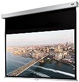 Celexon Rollo-Leinwand Professional Plus | Format 16:10 | Nutzfläche 200 x 125 cm | Beamer-Leinwand geeignet für jeglichen Projektortyp | Auch als Full-HD und 3D-Leinwand einsetzbar | einfache Installation & gute Planlage |