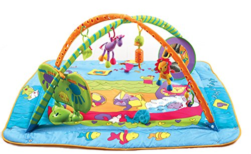 Tiny Love 33312002 Gymini Kick & Play Palestrina, Blu