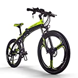 RICH BIT Bicicleta eléctrica, ZDC-880, e-Bike, 250W, 36V, 9.6AH (Verde-Negro)