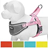 Blueberry Pet New Soft & Comfy 3M Reflective Strips Padded Dog Harness Vest, Chest Girth 42cm-54cm, Pink, Nylon Adjustable Training Harnesses for Dogs