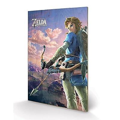 PYRAMID - Panneau en Bois Zelda BOTW Hyrule Scene
