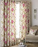 "Rosemoor Ringtop Eyelet Curtains (Pair) - Fuchsia Pink and Beige - Delicate Floral Design - Ready Made - Semi Sheer - PolyCotton - 168cm width x 137cm drop (66"" x 54"" inches) - Made by Riva Paoletti"