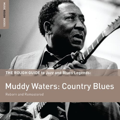 Rough Guide To Muddy Waters: C...
