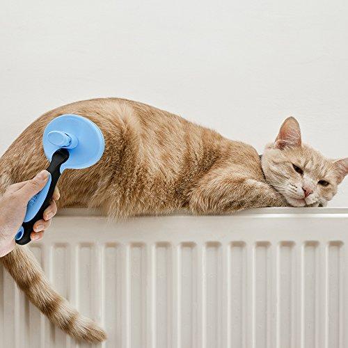 Yica Softbürste Fellpflege für Hunde und Katzen Zupfbürste,Premium Unterwollbürste & Unterfellbürste für Mittel- & Lang-Haar Enthaarungs- & Entfilzungs- Bürste Zupfbürste Fellpflege Hundebürste,Blau - 6