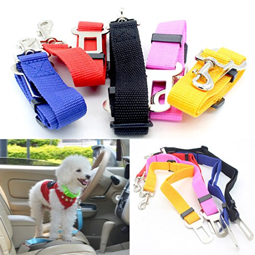 car-pets-seat-belt-for-dogs-cats-rabbits-pet-safety-rope-harness