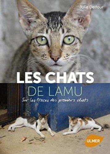 Les chats de Lamu : sur les traces des premiers chats