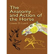 The Anatomy and Action of the Horse (Dover Anatomy for Artists)