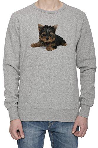 Yorkshire Terrier Cane Uomo Grigio Felpa Saltatore | Men's Grey Sweatshirt Jumper