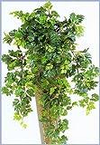 Licht & Grün exclusive Kunstpflanzen Künstliche Hängepflanze Grape Ivy, sehr natürlich