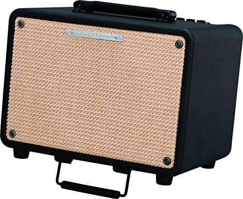 "Ibanez T30 - Combo per chitarra acustica - 30W - 1 x 8"""