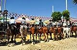 ZUNTO los caballos Haken Selbstklebend Bad und Küche Handtuchhalter Kleiderhaken Ohne Bohren 4 Stück