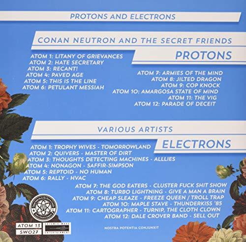 Zoom IMG-1 protons and electrons
