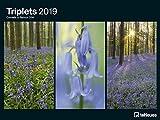 Triplets 2019 - Kunstkalender, Posterkalender Triplets , Naturkalender 2019  -  64 x 48 cm