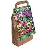 101 Promo Bulb Pack - 6 Different Summer Flowering Varieties (101 Bulbs)