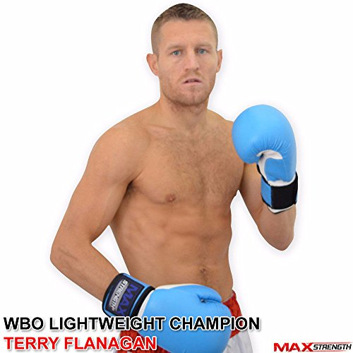 Boxhandschuhe Kick Boxsack Muay Thai UFC Kampf Training Mitts MMA blau,, blau