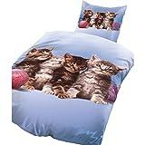 Bertels Kitty 1352pezzi Set di biancheria da letto in microfibra, azzurro, 38,6x 28,2x 4,6cm