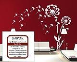 blattwerk-design Wandaufkleber- Blume, Pusteblume mit Pollenflug, Löwenzahn M070 Schwarz