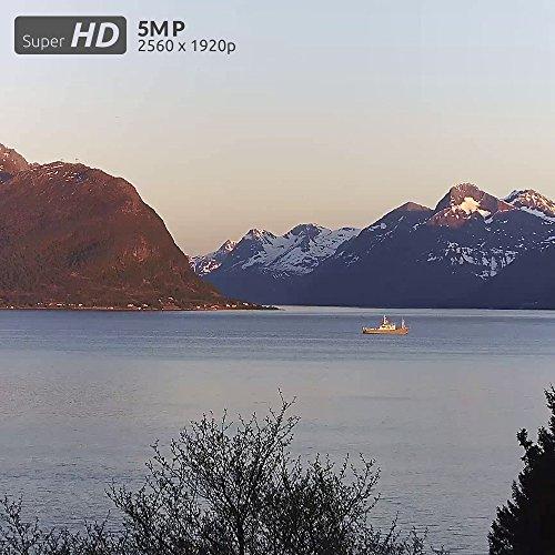 Reolink 5MP Super HD Überwachungskamera PoE IP Kamera mit Audio, SD Kartensteckplatz, Bewegungserkennung, Fernzugriff und IP66 Wasserfest für Aussen, Innen, Haus Sicherheit RLC-420-5MP