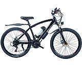 QYHT E-Bike Elektrofahrrad Faltbares Mountainbike, 24 Zoll Reifen Elektrisches Fahrrad Ebike mit 250W bürstenlosem Motor und 36V 7.8Ah Lithium-Batterie (Schwarz)