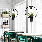 Osradmd der Wind Licht Industrieanlagen Retro kreative Persönlichkeit Pflanzen American Restaurant Balkon Lampe Kronleuchter minimalistischen skandinavischen Lampen, Runde 9W Glühbirne