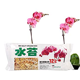 FOReverweihuajz 12 L Orchid Soilless Moss Culture Fertilizer,Sphagnum,Garden Supply FOReverweihuajz 12 L Orchid Soilless Moss Culture Fertilizer,Sphagnum,Garden Supply 51a9cLvOJyL
