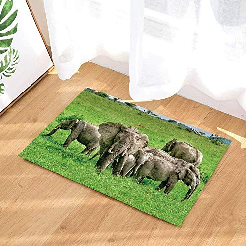 Kwboo Decoración De Animales Salvajes, Green Meadows con Un Grupo De Elefantes...
