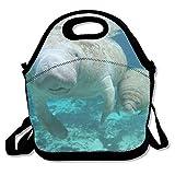 Dozili Manatee Mama und Baby Große und dicke Neopren-Lunch-Taschen, isolierte Lunch-Tasche, warm, mit Schultergurt, für Damen, Teenager, Mädchen, Kinder, Erwachsene