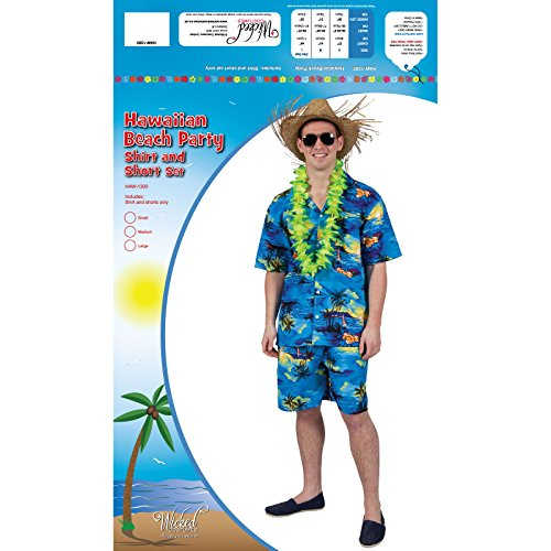 Mens Hawaiian Party Guy Luau Summer Beach BBQ Shirt & Shorts Fancy Dress Costume - 2