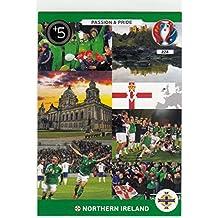 Panini Adrenalyn XL UEFA Euro 2016Nordirland Passion & Pride