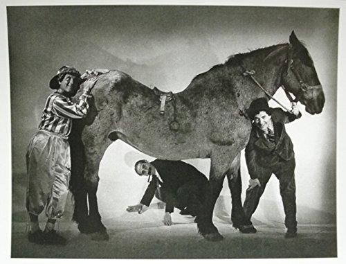 The Marx Brothers 1937 Postkarte 15cm Legende Musik Film Sammelkarte Deko GMT K4
