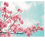 CCEEBDTO Jigsaw Puzzle 500 Piece For Adults Puzzle 3D Wooden Classic Puzzle Cherry Blossoms Diy Educational Puzzle Christmas Home Decor Gift 52X38Cm