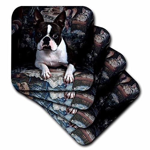 3drose-cst-3112-3-boston-terrier-philippe-ceramic-tile-coaster-set-of-4